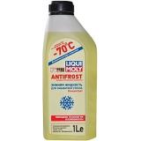 01120 Стеклоомывающая жидкость концентрат (-70 ⁰С) 1 л